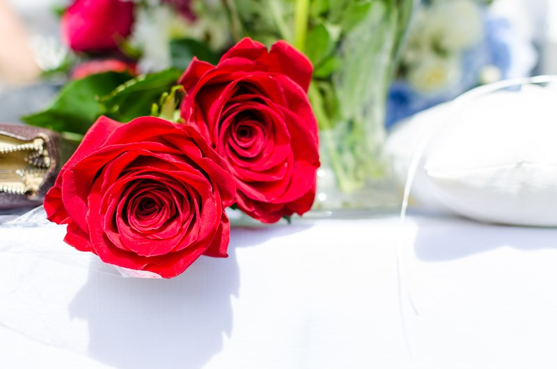red-roses-gifts